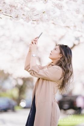 CherryBlossom-13