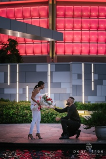 Vancouver_Proposal_Highlight-3
